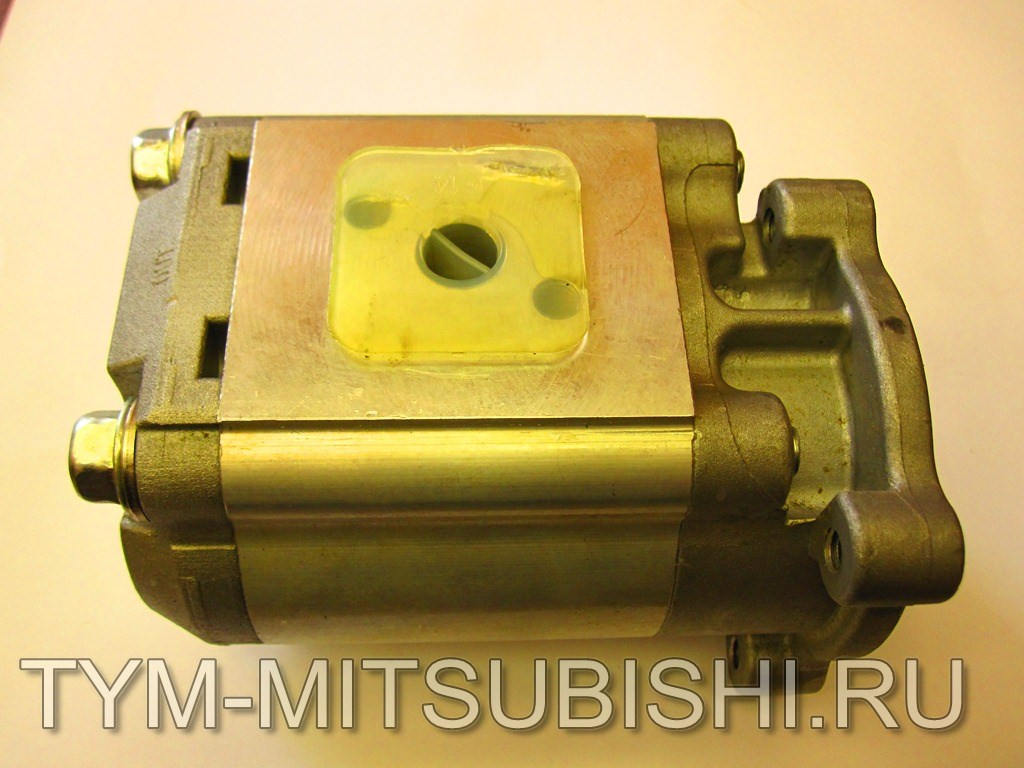 19955100001 GEAR PUMP, ASSY (MAIN)